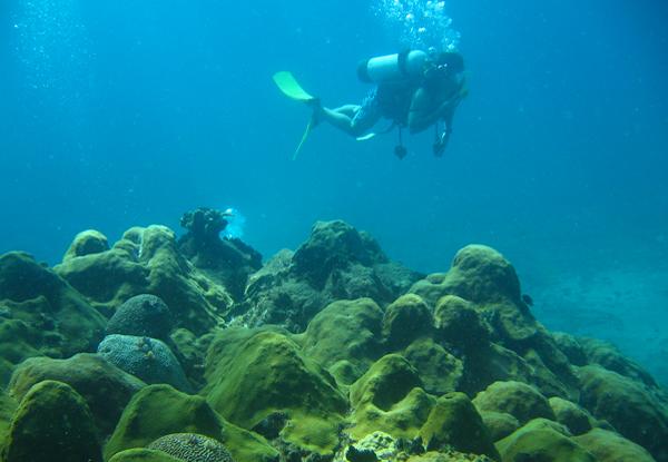 submarina-04