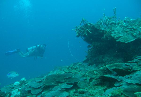 submarina-08