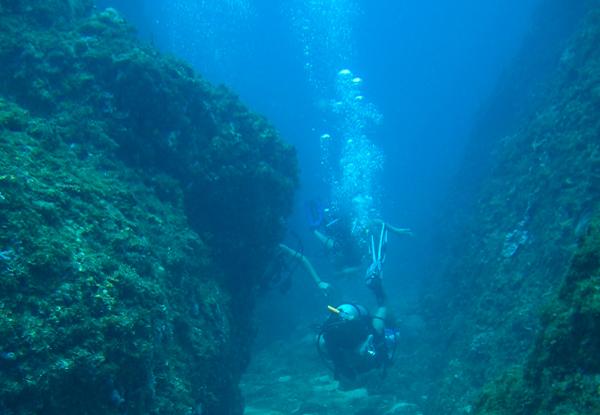 submarina-10